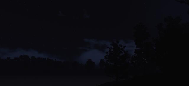 NightSwamp