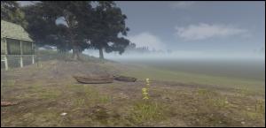 Swamp_boats